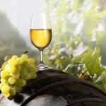 crimea_white-wine
